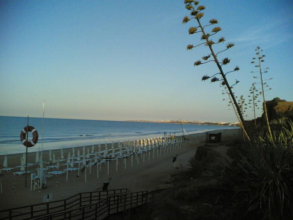 Praia amanhecer