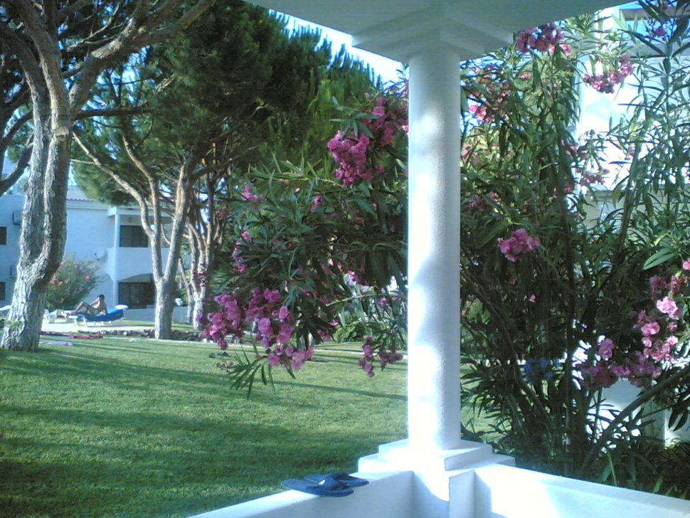 Terraço-Jardin